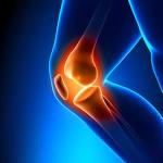 Knee rehab